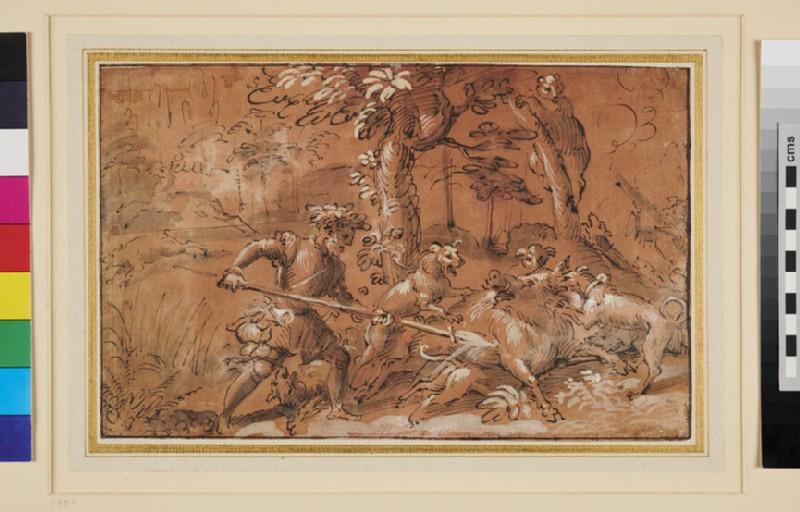 A boar Hunt