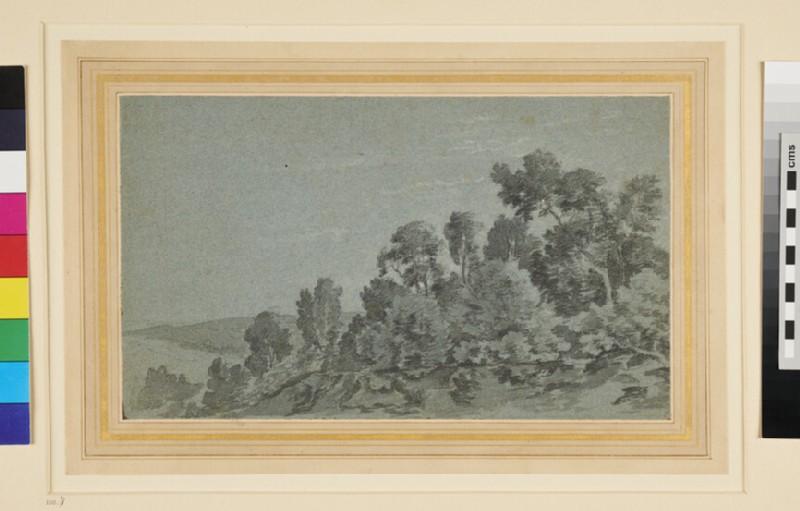 A wooded Hillside (WA1957.92, recto)