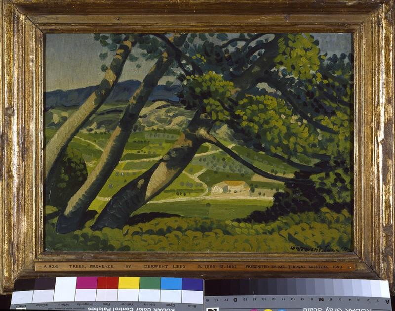 Trees, Provence (WA1959.54.1)