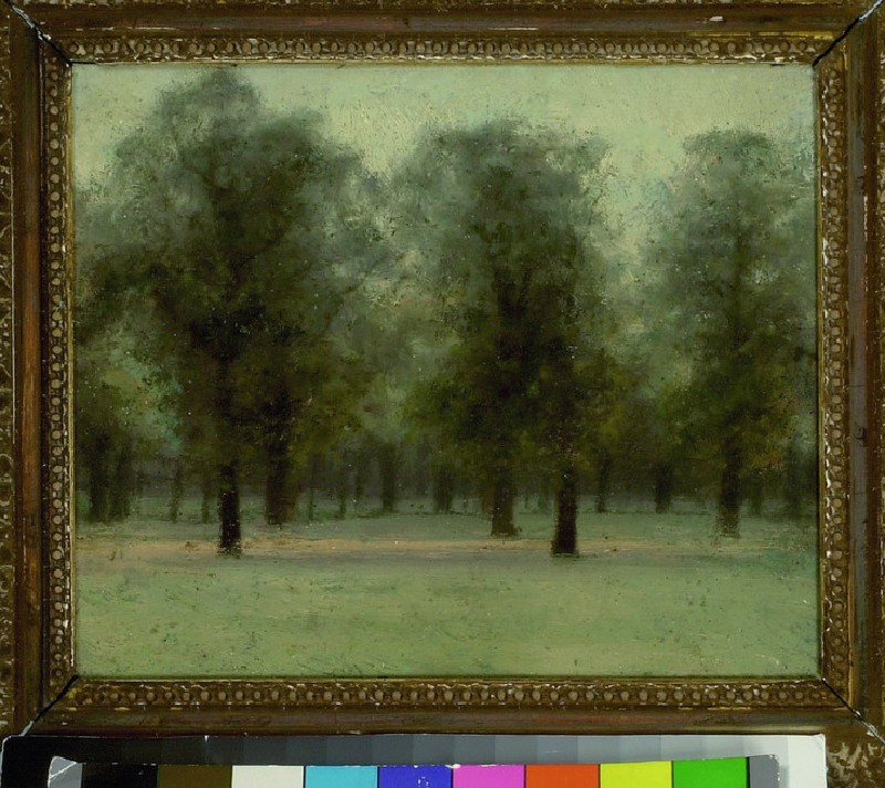 Beech Trees at Sunset, Kensington Gardens (WA1961.31.4)