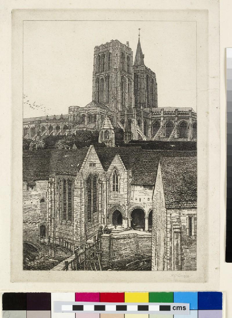 Anglia Perdita (WA1962.54.81)