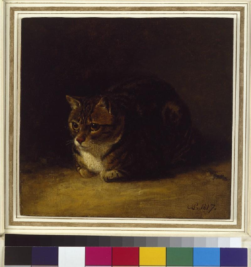 Study of a Cat (WA1966.13.2)