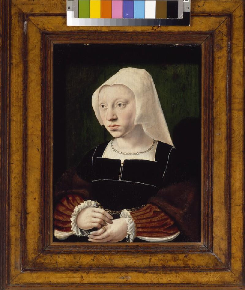 Portrait of a Woman (WA1968.138)