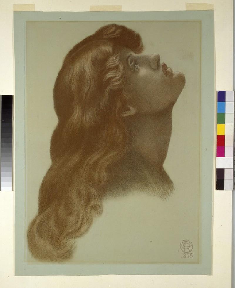Head of a Woman (attendant for 'Astarte Syriaca')