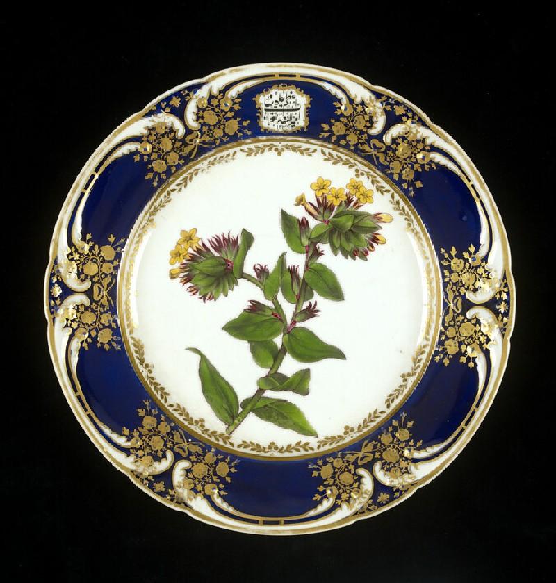 Dinner plate (WA1981.608)