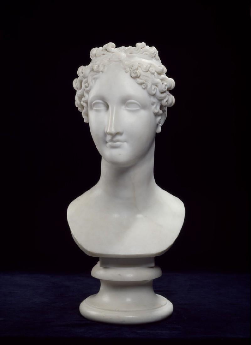 Ideal Head (WA1996.395)