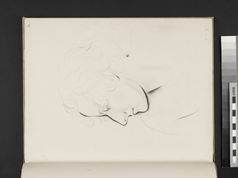 Study of a female head, in profile (WA2003.197.20)