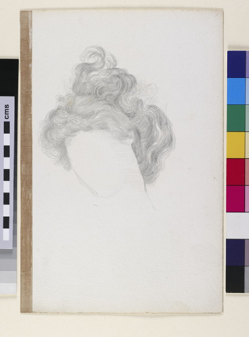 Study of Hair on a Woman's Head