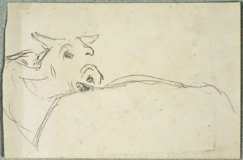 Study of a Bullock