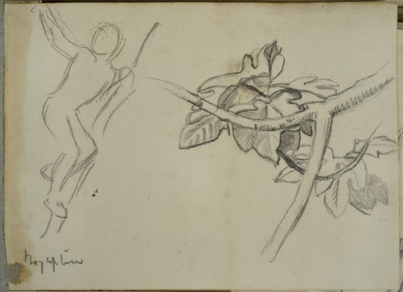 Recto: Studies of a Boy up a Tree and a Fig Leaf and Branch<br />Verso: Studies of a Stork in Flight and of a Bird's Legs