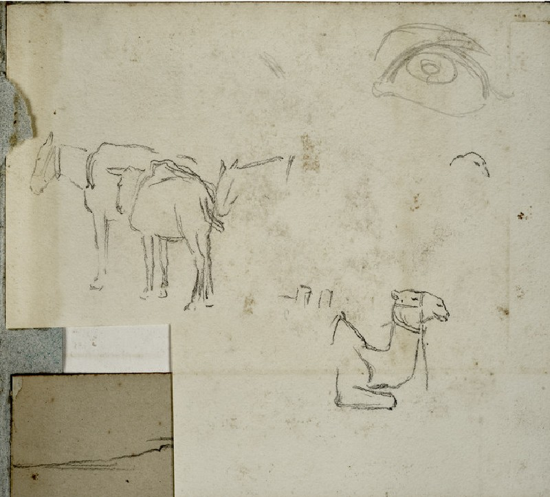 Two Mules and a Camel, with a Study of an Eye (WA2007.6.89)