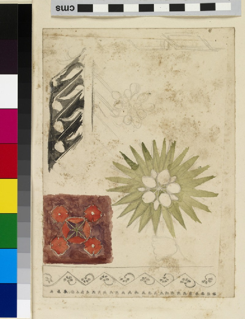 Studies of decorative Motifs based on Flowers (WA2007.7.99)