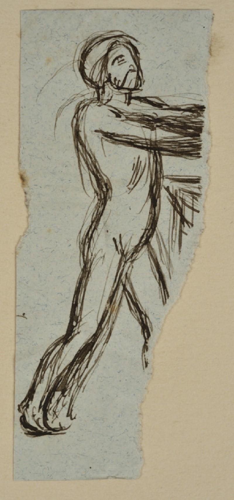 Study of a male Nude (WA2007.8.24)