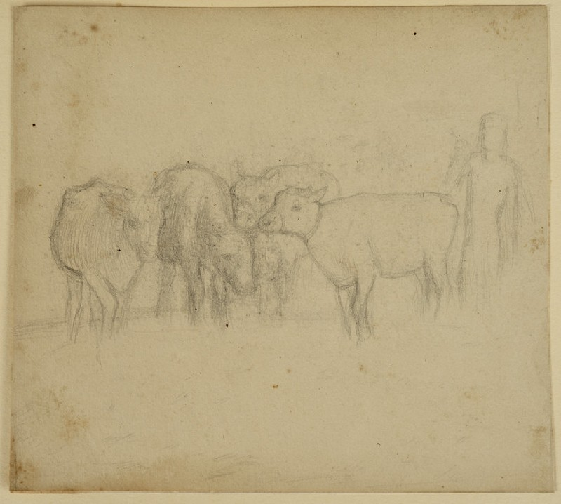 Study of an Arab and four Cattle