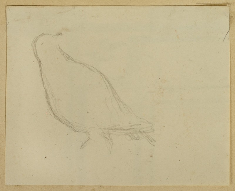 Recto: Study of a Bird<br />Verso: Fragment of Decoration