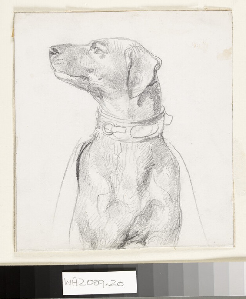 Recto: Study of a Dog<br />Verso: Study of a Boy wearing a Kilt