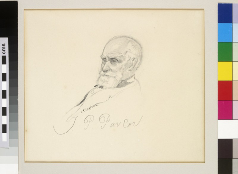 Portrait of Ivan Pavlov