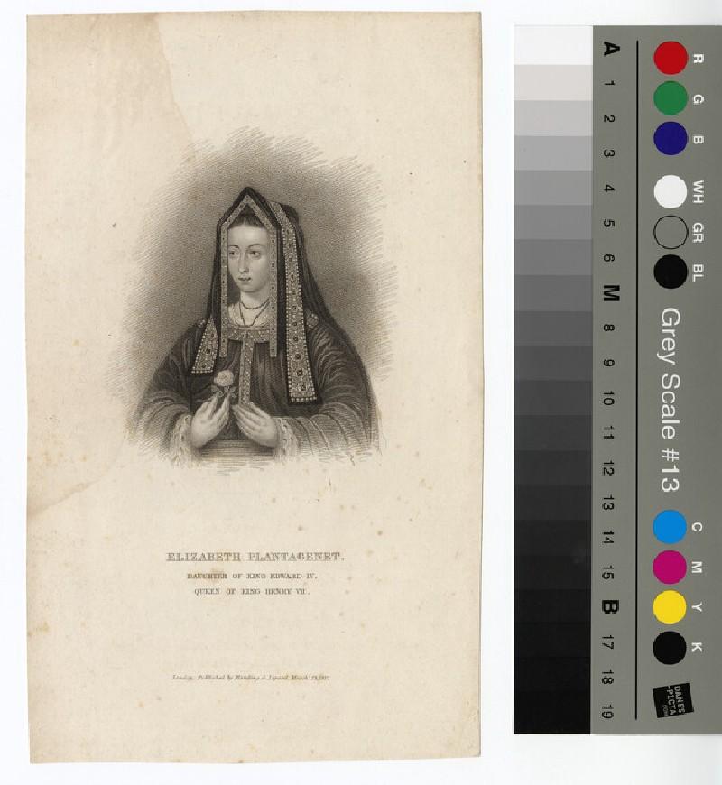 Portrait of Elizabeth Plantagenet