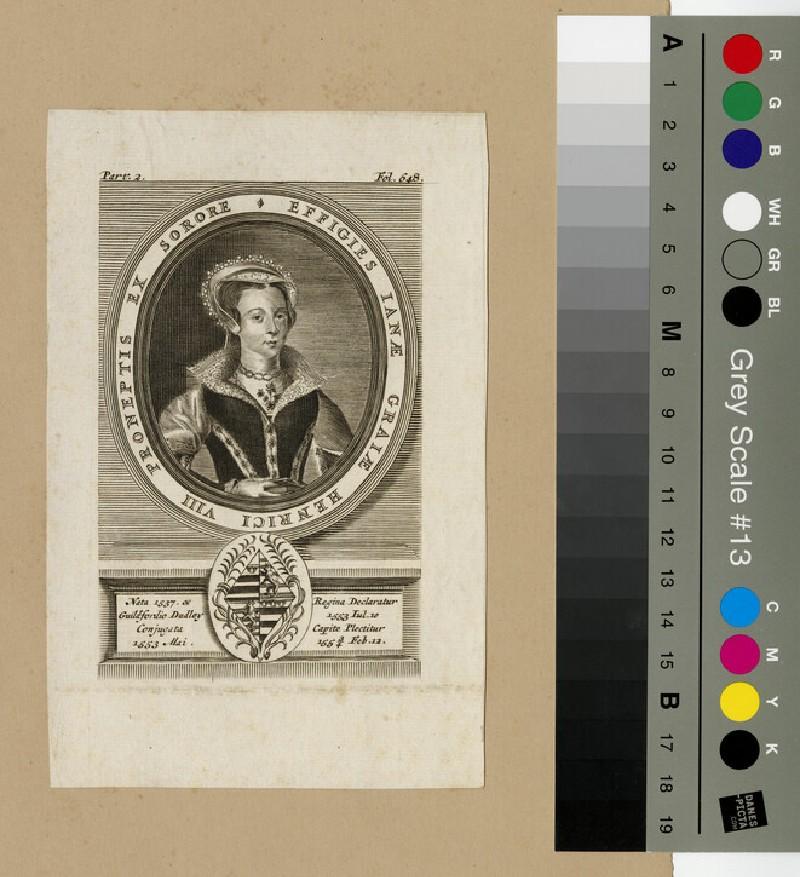 Portrait of Jane Grey (WAHP12908)