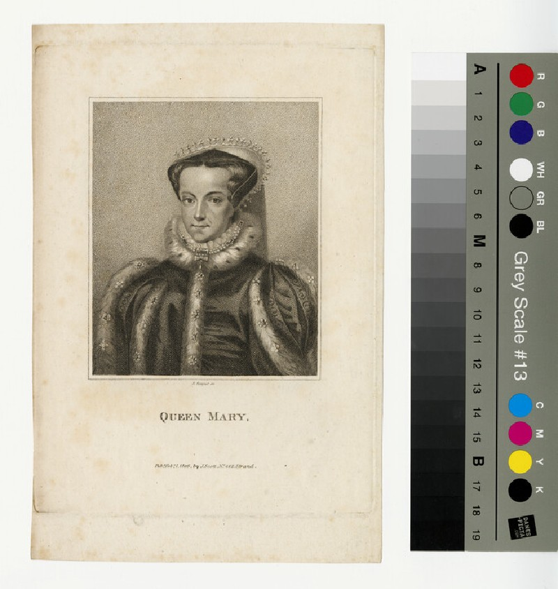Portrait of Mary I (WAHP12946)