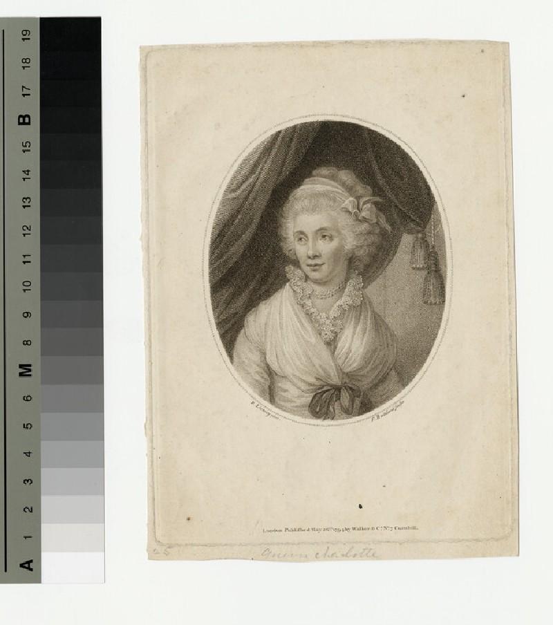 Portrait of Queen Charlotte (WAHP13426)