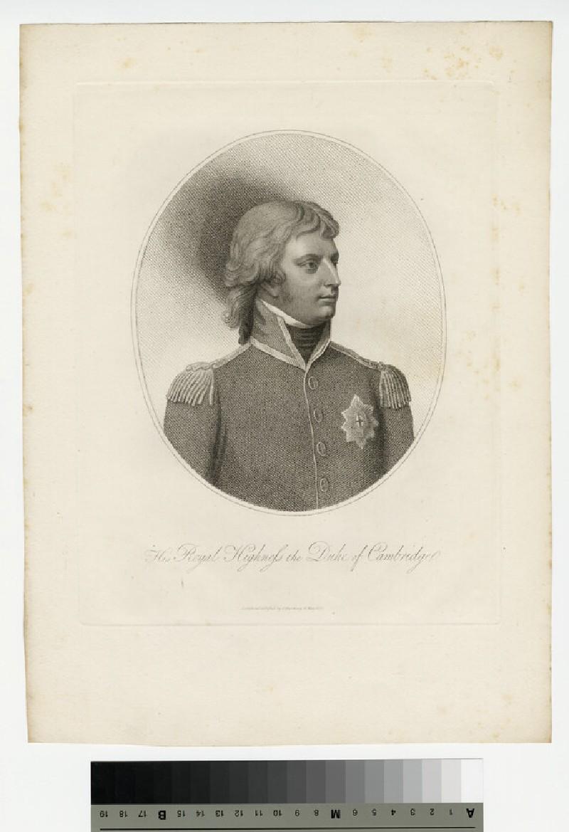 Portrait of Cambridge
