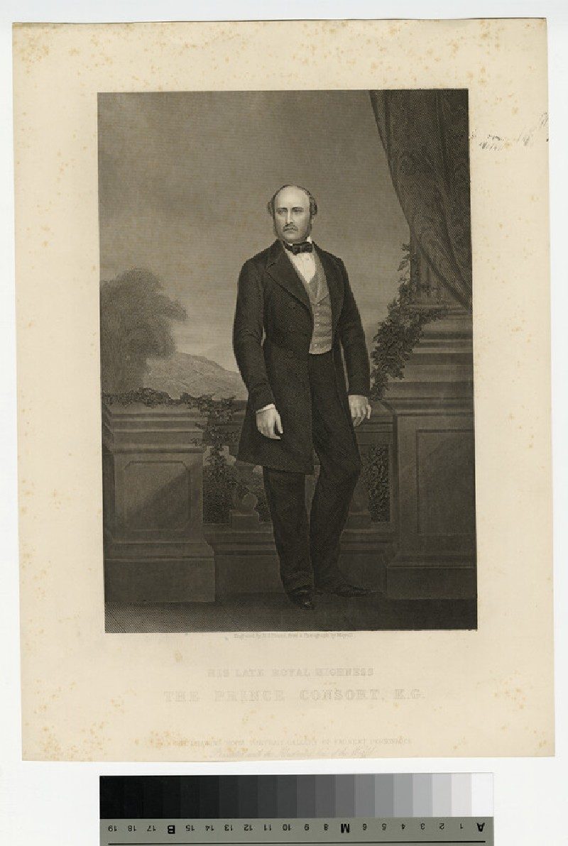 Portrait of Prince Albert (WAHP13752)