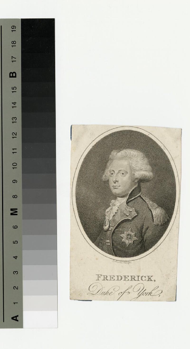 Portrait of York (WAHP13883)