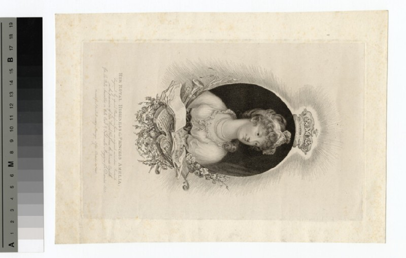 Amelia, Princess (WAHP14215.1)
