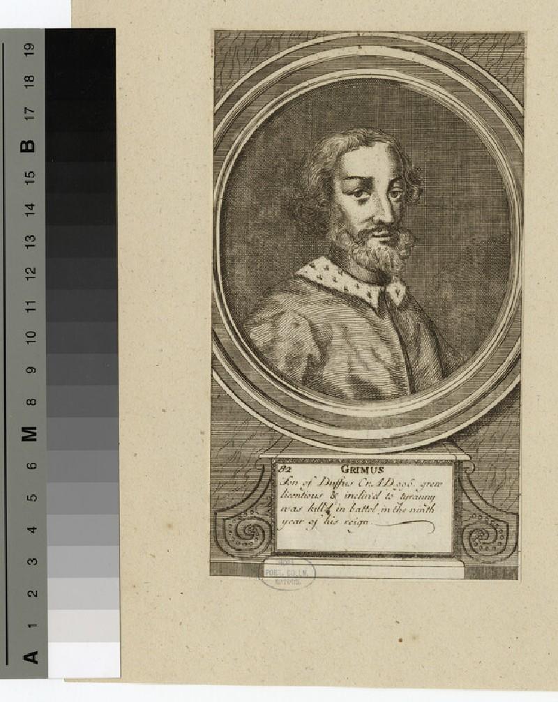 Portrait of Grimus