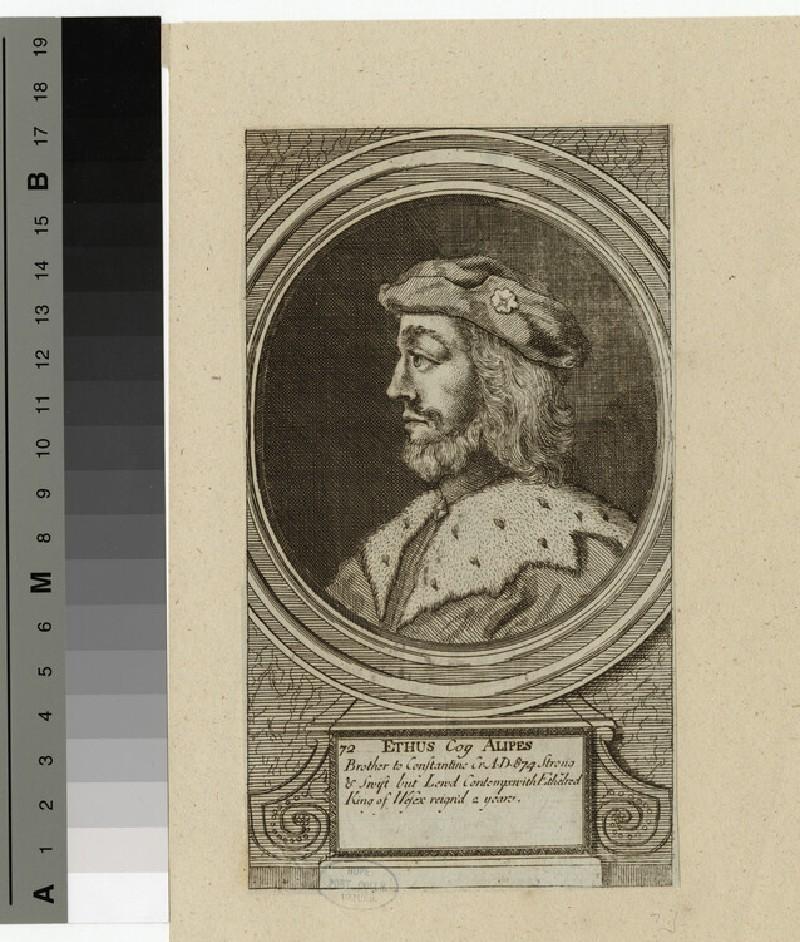 Portrait of Ethus Cog Alipes (WAHP14324)