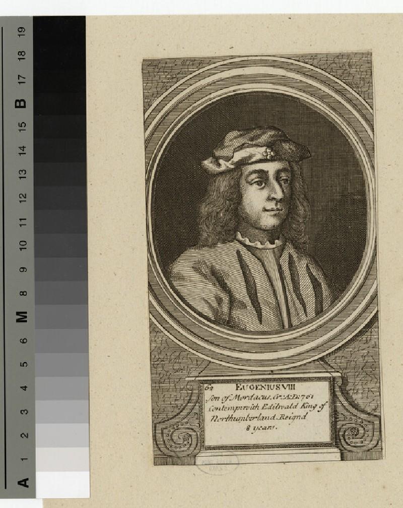 Portrait of Eugenius VIII