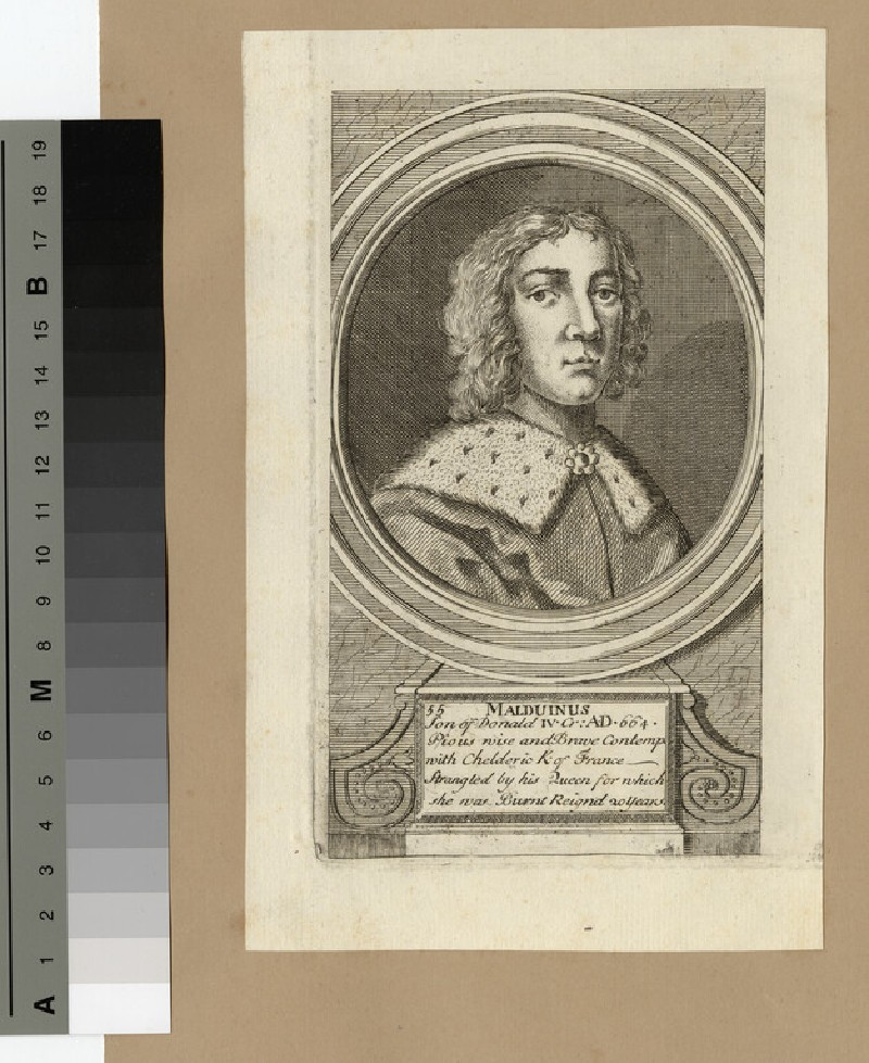 Portrait of Malduinus (WAHP14345)