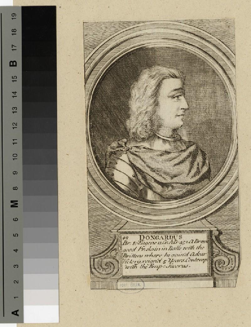 Portrait of Dongardus