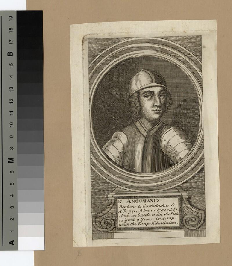 Portrait of Angusianus