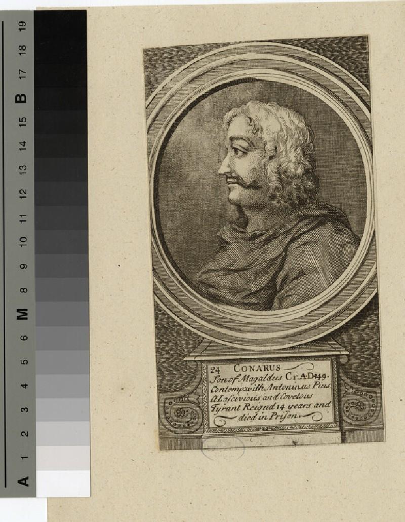Portrait of Conarus (WAHP14377)