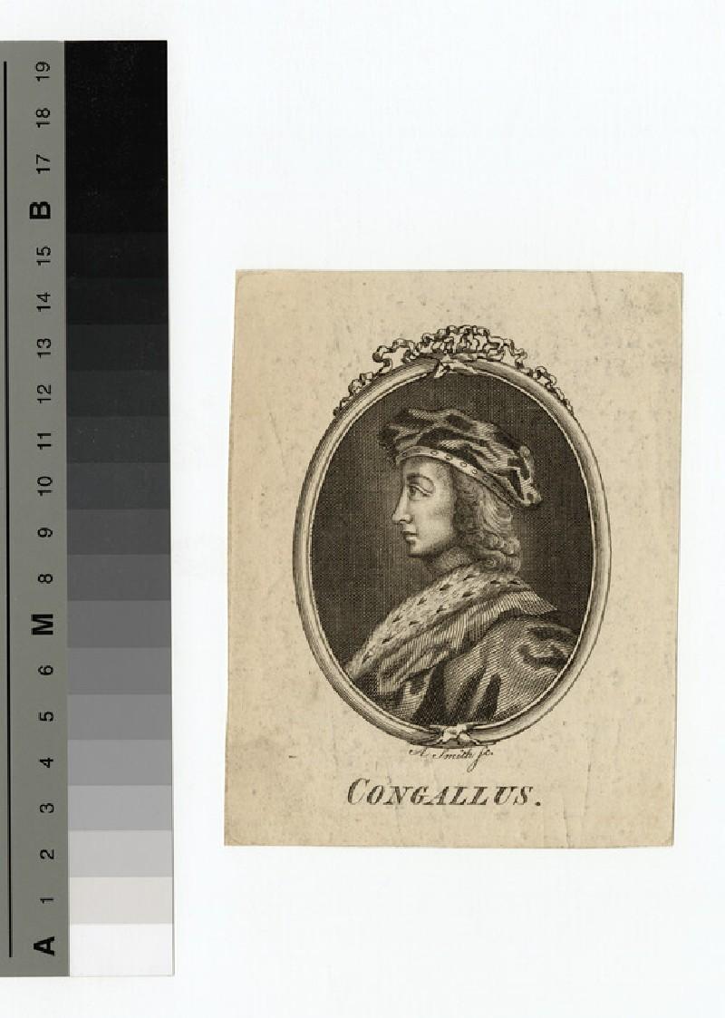 Portrait of Congallus (WAHP14429)