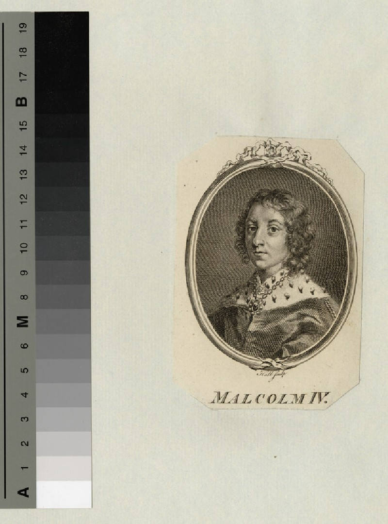 Malcolm IV (WAHP14458)
