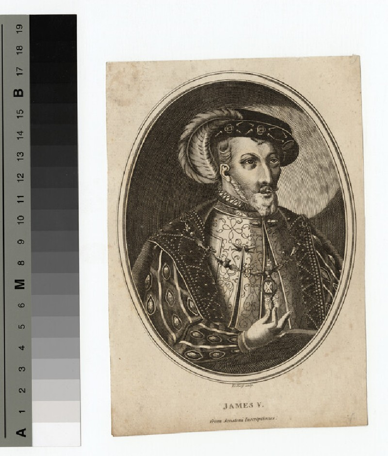 James IV (WAHP14524.1)