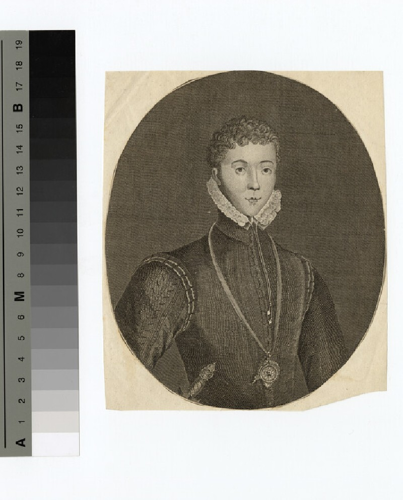 Portrait of Darnley (WAHP14532)