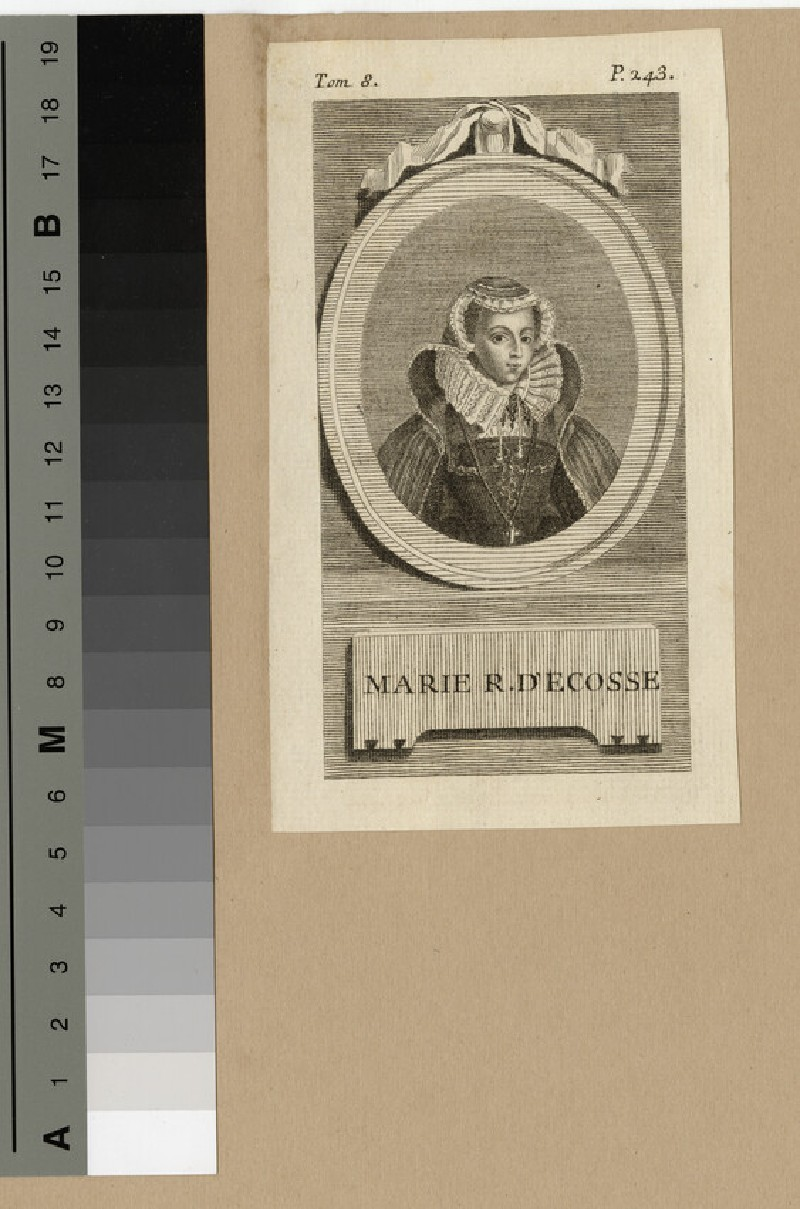 Portrait of Marie Reine.D'Ecosse (Mary Queen of Scots)
