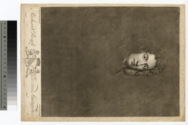 Portrait of VisCount Shannon (WAHP14880)