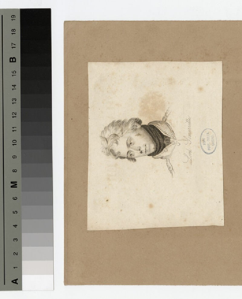 Portrait of Lord Somerville (WAHP17670)