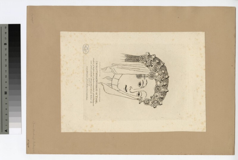 Portrait of Cecily Neville, Duchess of York