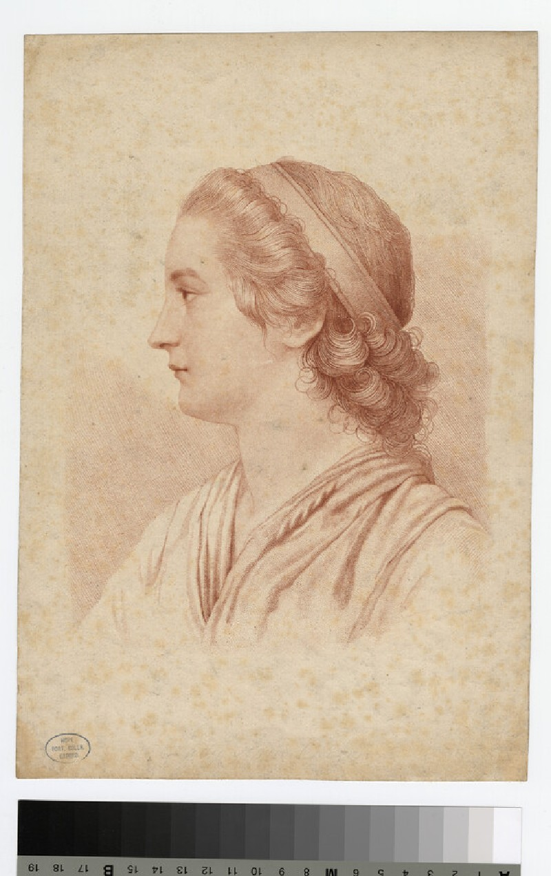 Essex, Countess (WAHP18375.2)