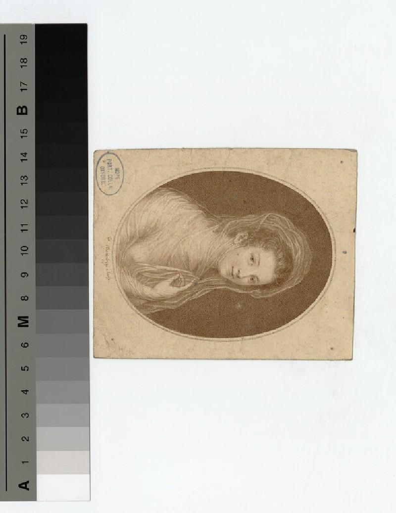 Portrait of Duchess Kingston (WAHP18603)