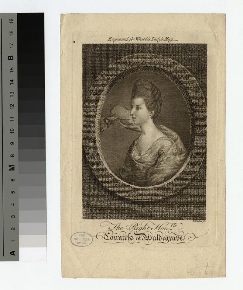Portrait of Countess Waldegrave