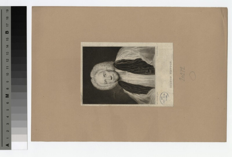 Portrait of Bishop T. Newton (WAHP20272)