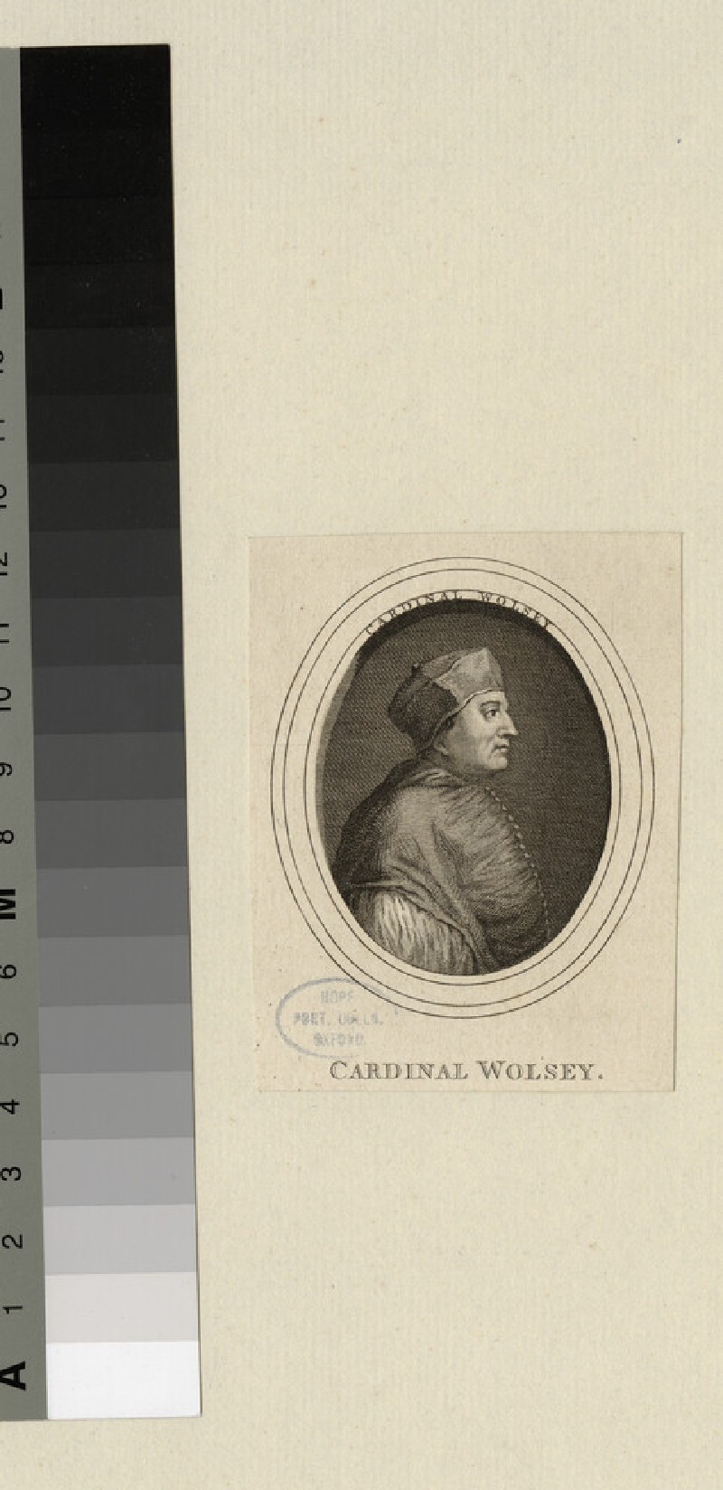 Portrait of T. Wolsey (WAHP20987)