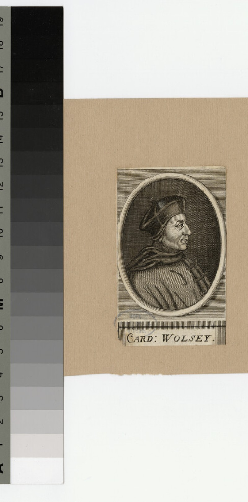 Portrait of Thomas Wolsey (WAHP21021)